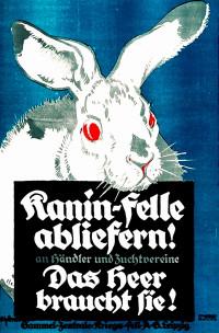 Sammelt Kaninfelle